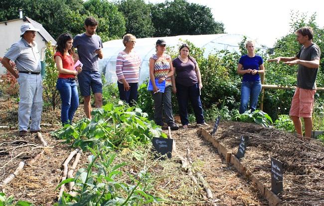 jardin for t en permaculture en bretagne c tes d 39 armor 22